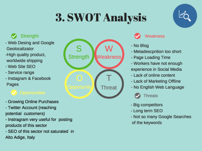 SWOT Analysis Digital Marketing Plan