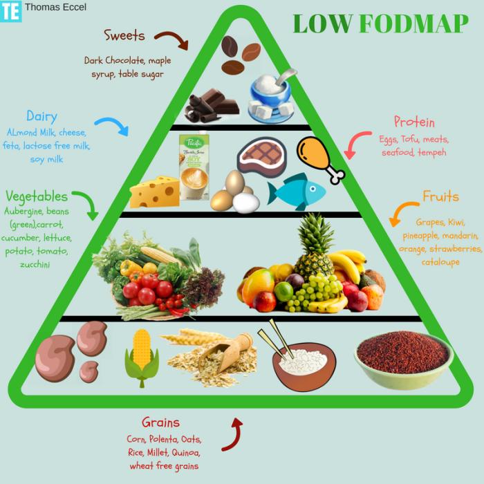 IBS Food Pyramid