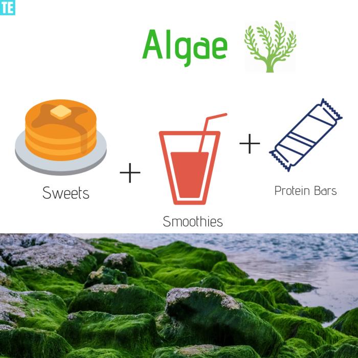 Algae Future Food