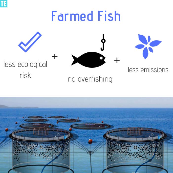 fish farming future food trend